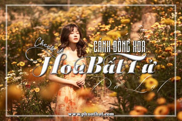Canh-dong-hoa-bat-tu-da-lat